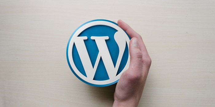 wordpress-un-sito-da-professionista-700x350