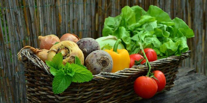 alimentazione-vegetale-e-integrale-700x350